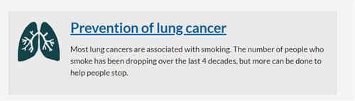 Lung cancer report 2020